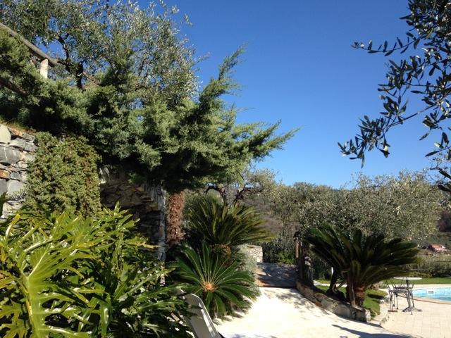 moneglia_vegetazione